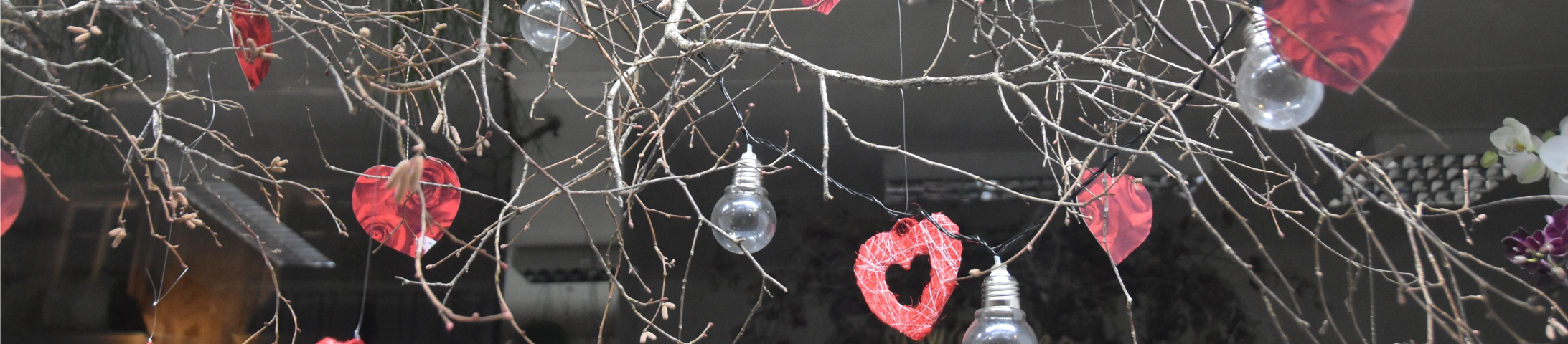 Les vitrines gagnantes de la St-Valentin 2021
